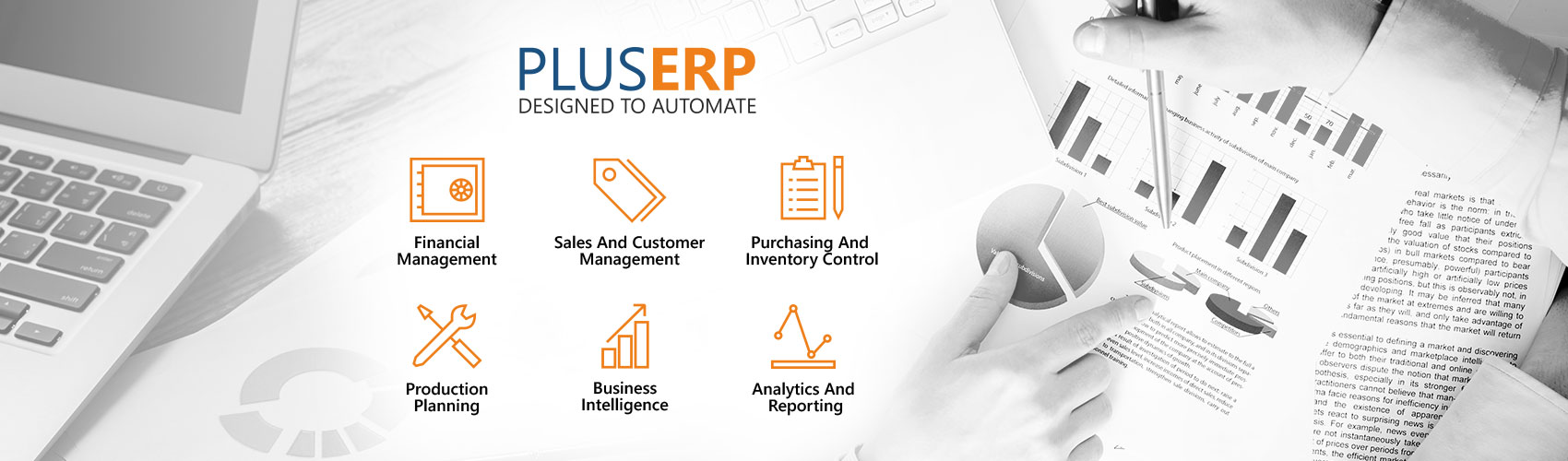 Plue ERP Design To Automate
